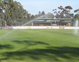 Protecting our our local parks and sports fields in a hotter climate